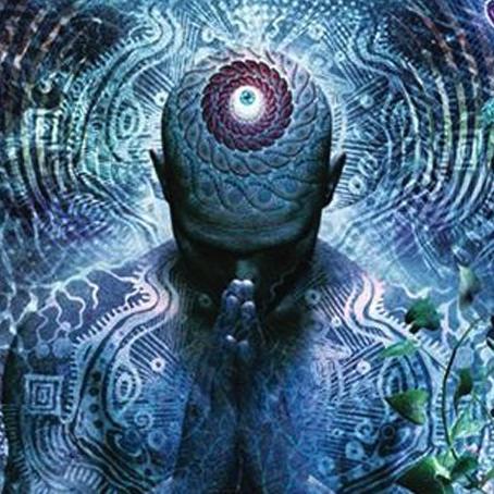 Lucid Dreaming: Dreaming Wide Awake